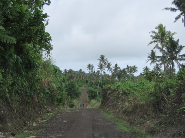 Taveuni: Gravel Roads 4