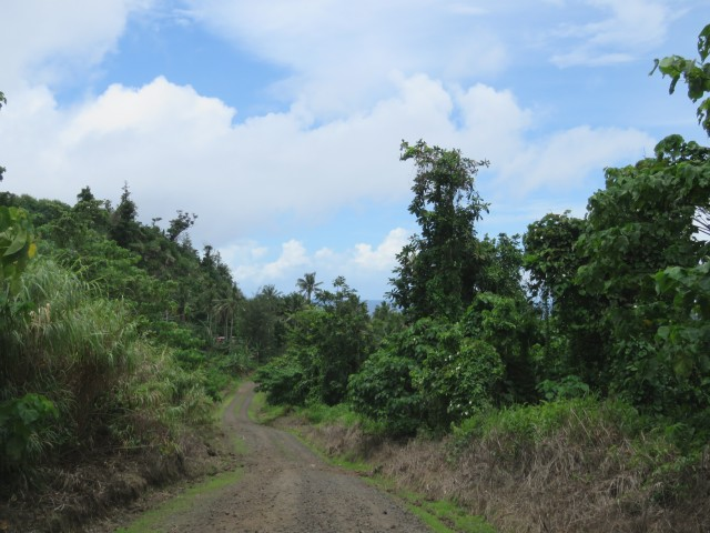 Taveuni: Gravel Roads 5