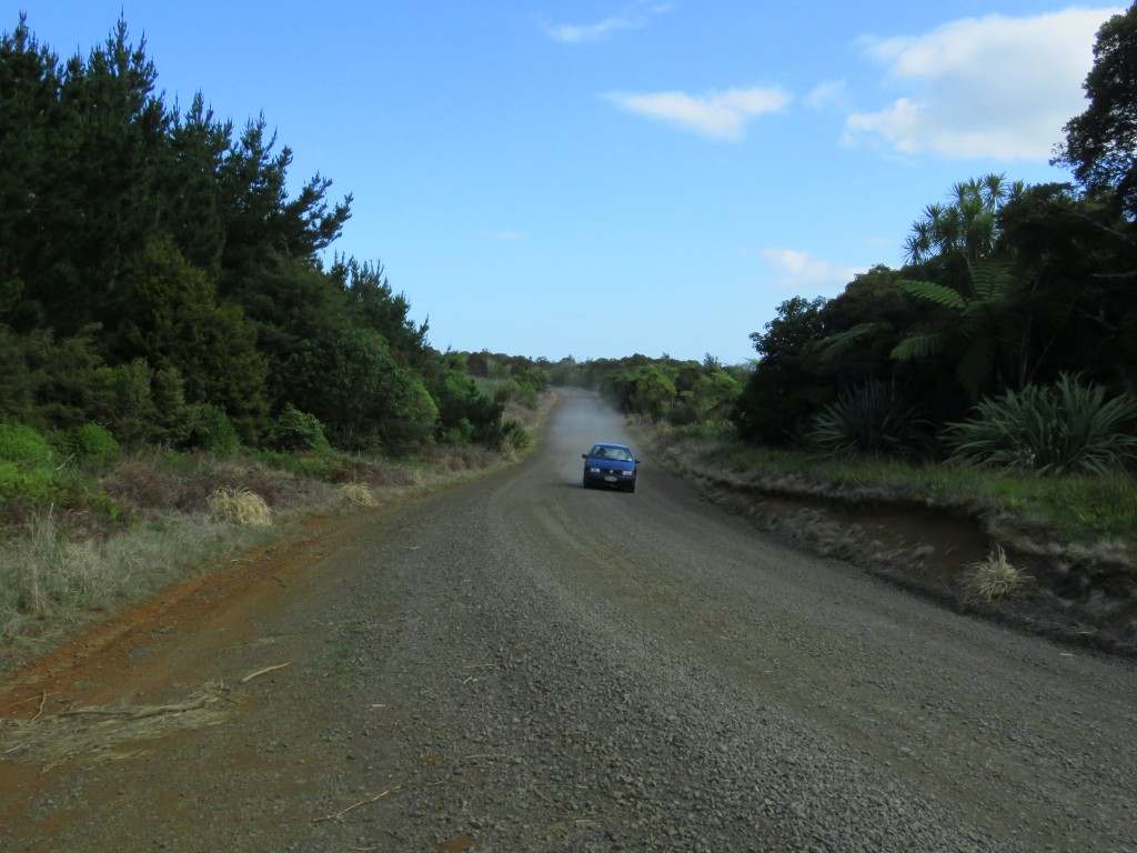 NZ: Waipoua Gravel Road