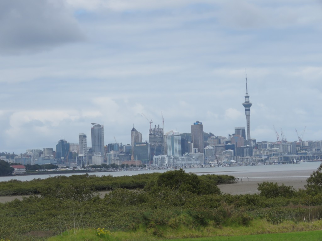NZ: Auckland Skyline