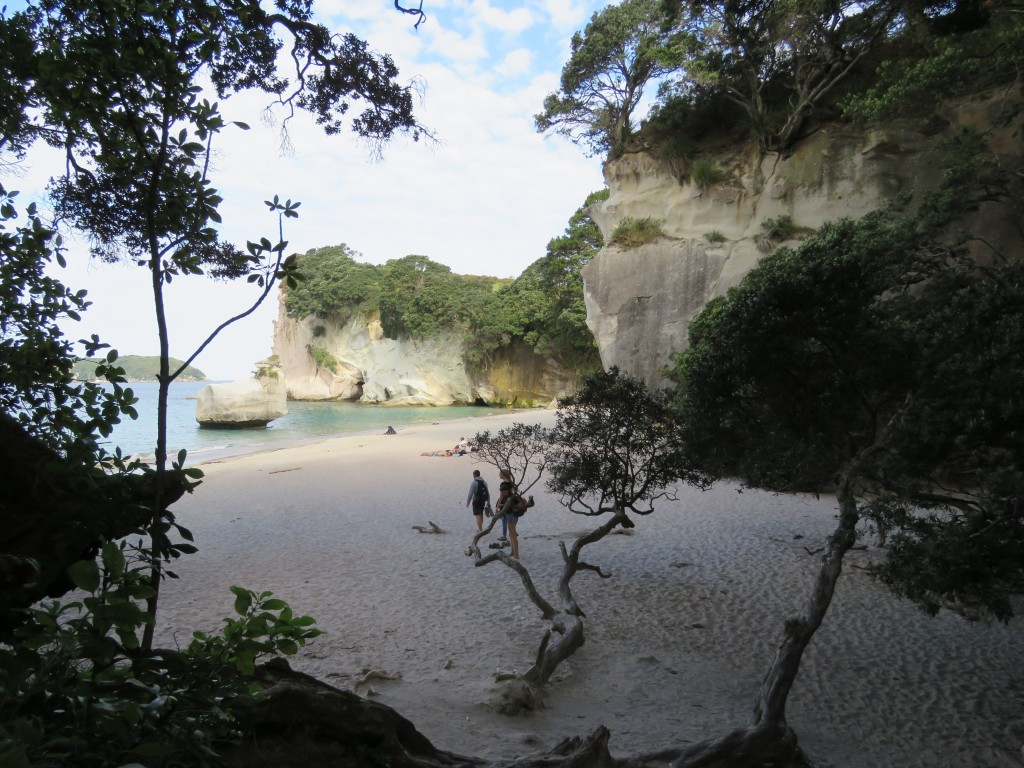 NZ: Cathedral Cove 4
