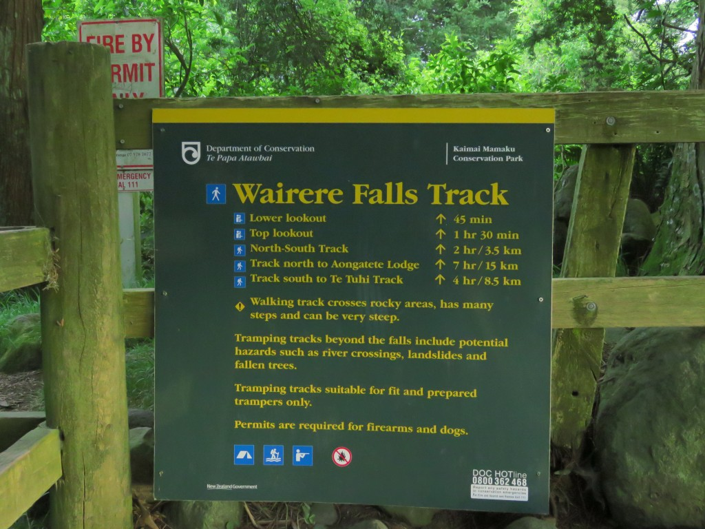 NZ: Wairere-Falls 14 - Tramping Track