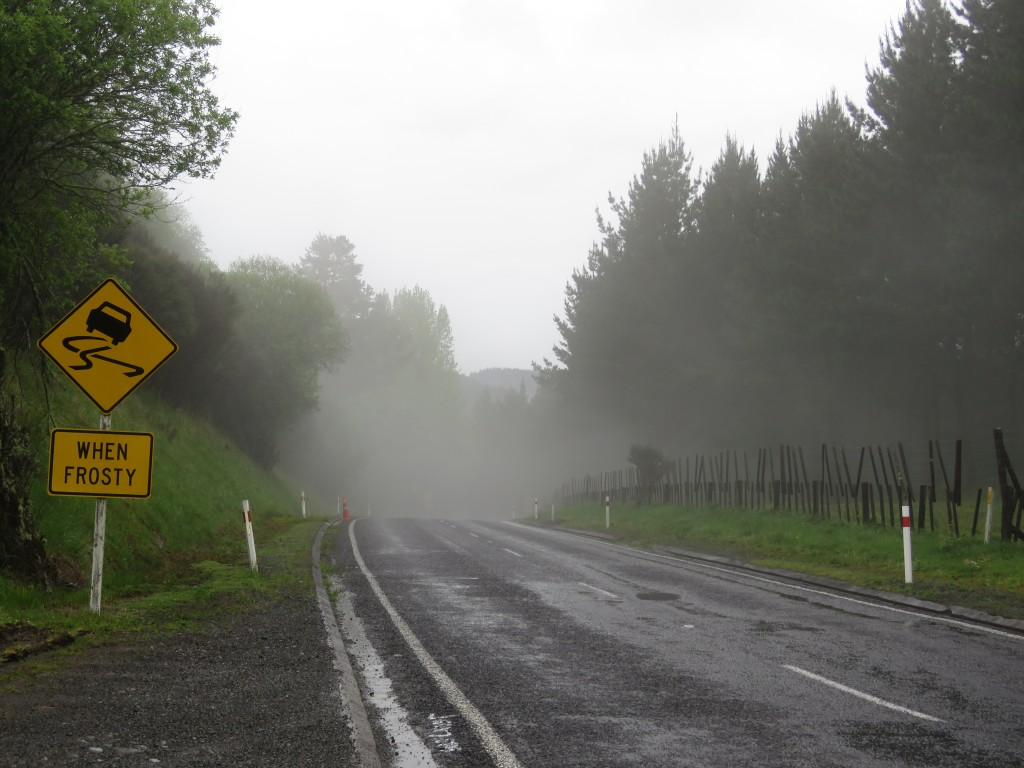 NZ: State Highway 4, Nebel