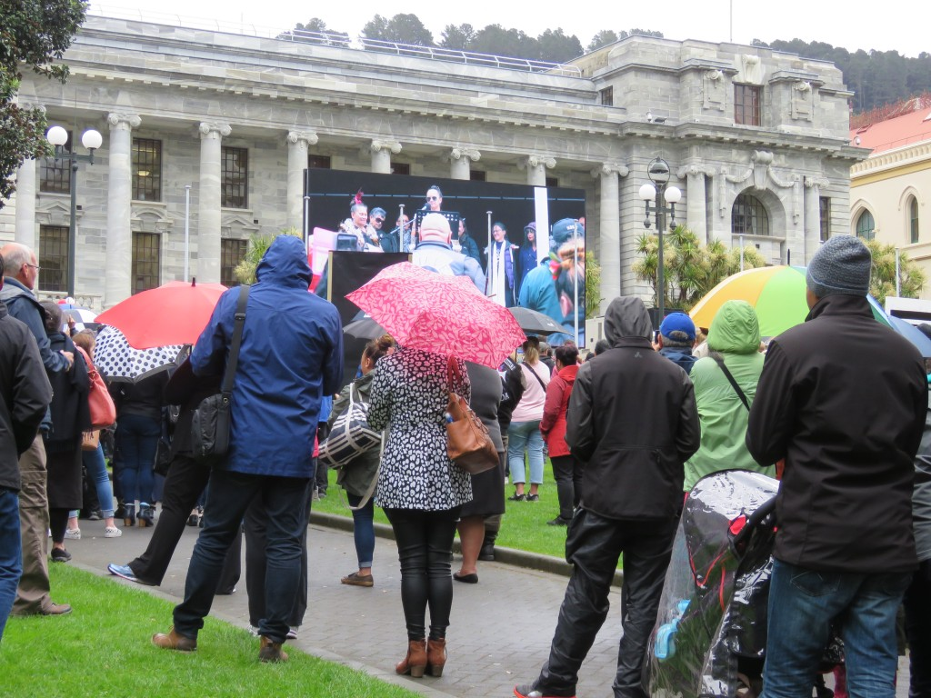 NZ: Wellington Demonstration
