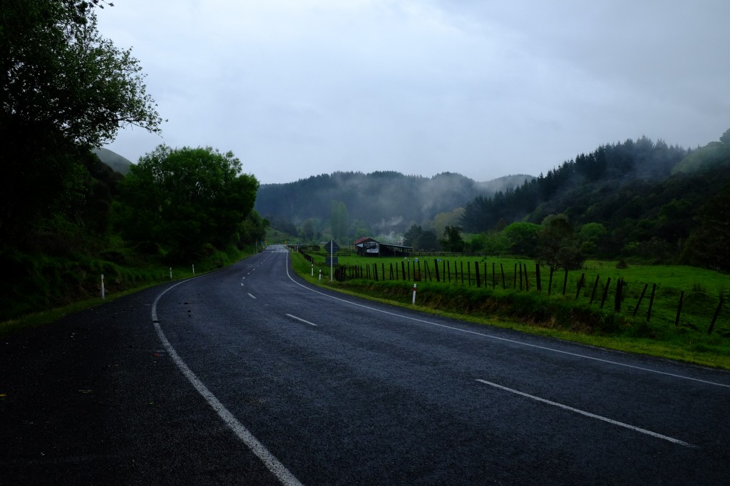 NZ: State Highway 4, Nebel 6