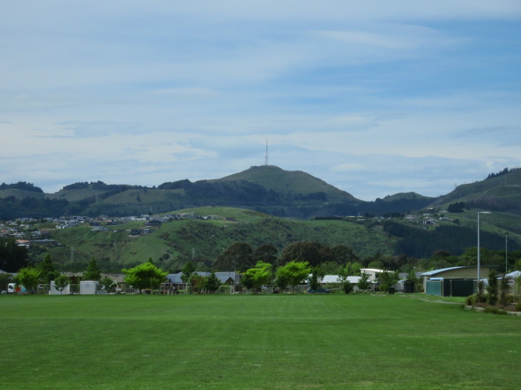 NZ: Christchurch Halswell Domain 1